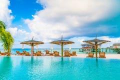 Barra da piscina na ilha tropical de Maldivas Fotografia de Stock Royalty Free