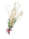 Barra de abedul de la Navidad Foto de archivo libre de regalías