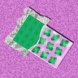 Barra de chocolate verde no pacote do opend com folhas de hortelã Fotografia de Stock