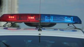 Barra de luces del estroboscópico que destella en el transporte de la policía, escena del crimen del coche patrulla, señal almacen de metraje de vídeo