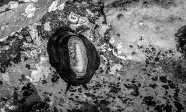 Barra de mar en las rocas Imagenes de archivo