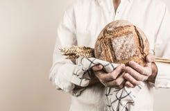 Barra de pan crujiente rústica en manos del ` s del hombre del panadero imagen de archivo