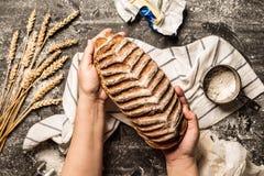 Barra de pan crujiente rústica en manos del ` s del panadero en negro imagen de archivo