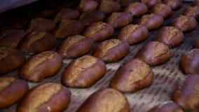 Barra de pan en la cadena de producción en la panadería Barra de pan cocida en la panadería, almacen de metraje de vídeo