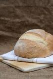 Barra de pan recientemente cocida de pain de campagne del francés Fotografía de archivo libre de regalías