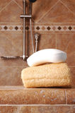 Barra de sabão no Loofah no chuveiro moderno imagens de stock royalty free