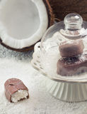 Barra di cioccolato con il materiale da otturazione della noce di cocco Fotografia Stock