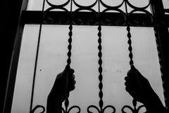 Barra di finestra della tenuta della mano Fotografia Stock Libera da Diritti