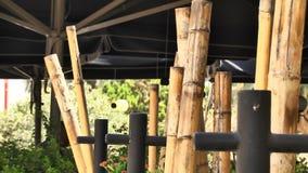 Barra di sushi, interno dei ristoranti giapponesi stock footage