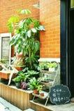 Barra do café Fotografia de Stock