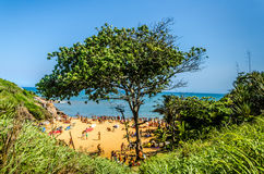 BARRA DO JACU, ESPIRITO SANTO, BRAZIL - DECEMBER 26, 2015: Aeria. L Top View Large group of tourists sunbathing on the beach in sunny day Royalty Free Stock Image