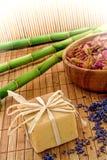 Barra do sabão de Aromatherapy em uns termas naturais Fotografia de Stock Royalty Free