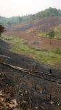 Barra inversa ed agricoltura dell'ustione in Tailandia Fotografia Stock Libera da Diritti
