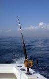 Barra profunda y carrete de la pesca en mar Foto de archivo libre de regalías
