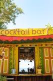 Barra tropicale del cocktail Fotografie Stock Libere da Diritti