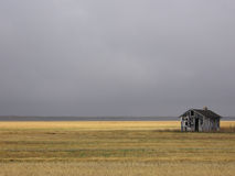 Barraca abandonada no campo dourado imagens de stock