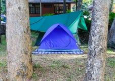 Barraca azul da abóbada para acampar fotografia de stock