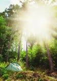 Barraca de acampamento em uma floresta, acampamento do verão, férias em família da aventura Imagens de Stock