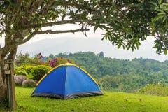 Barraca de acampamento no acampamento no parque nacional com nascer do sol Foto de Stock Royalty Free