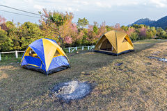 Barracas de acampamento no acampamento durante o dia Fotografia de Stock Royalty Free