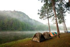 Barracas estabelecidas acampando Imagem de Stock