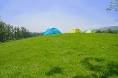 Barracas na cume gramínea na tarde ensolarada do verão fotografia de stock