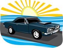 barracuda słońce Obrazy Royalty Free