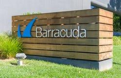 Barracuda sieci logo i kwatery główne Obrazy Royalty Free