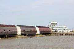 A barragem do êider na costa de Mar do Norte alemão Foto de Stock Royalty Free