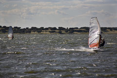 Barragem windsurfers Royalty Free Stock Photos