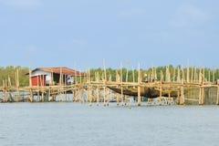 The Barramundi fish farm Stock Image