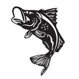 The Barramundi fish jump vector art design Stock Images