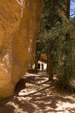 Barranca de Bryce Fotografía de archivo libre de regalías