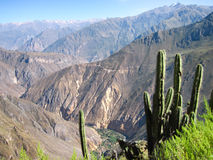 Barranca de Colca, Perú Foto de archivo