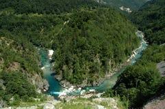 Barranca de Tara en Montenegro Imagen de archivo libre de regalías