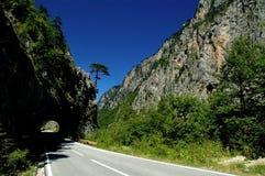 Barranca de Tara en Montenegro Foto de archivo