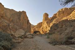 Barranca de Zohar del lecho de un río seco, desierto de Judea. imagen de archivo