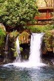 Barranca del cupatitzio XI. Natural national park barranca del cupatitzio, uruapan michoacan, mexico Stock Images