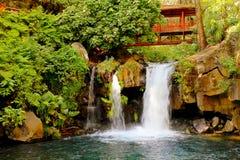 Barranca del cupatitzio XII. Natural national park barranca del cupatitzio, uruapan michoacan, mexico stock photo