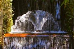 Barranca del cupatitzio XXVI. Natural national park barranca del cupatitzio, uruapan michoacan, mexico Royalty Free Stock Images