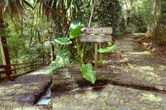 Barranca del cupatitzio XXXII. Natural national park barranca del cupatitzio, uruapan michoacan, mexico Stock Photos