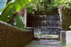 Barranca del cupatitzio XXXIII. Natural national park barranca del cupatitzio, uruapan michoacan, mexico royalty free stock images