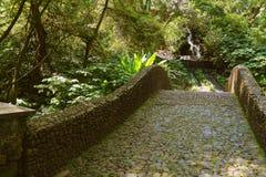 Barranca del cupatitzio XXXV. Natural national park barranca del cupatitzio, uruapan michoacan, mexico Stock Photo
