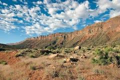 Barranca del desierto Fotos de archivo