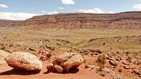 Barranca del desierto Fotos de archivo libres de regalías