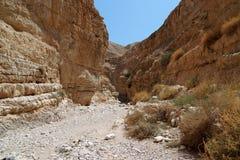 Barranca del desierto Imagenes de archivo