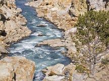 Barranca del río del Shoshone Fotografía de archivo
