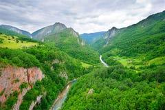 Barranca del río Tara en Montenegro Fotografía de archivo libre de regalías