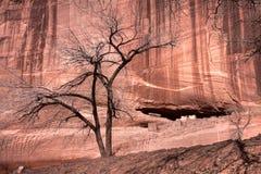 Barranca histórica mágica en pista de Navajo Imagenes de archivo
