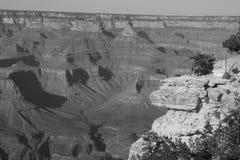 Barranca magnífica blanco y negro Imagen de archivo libre de regalías